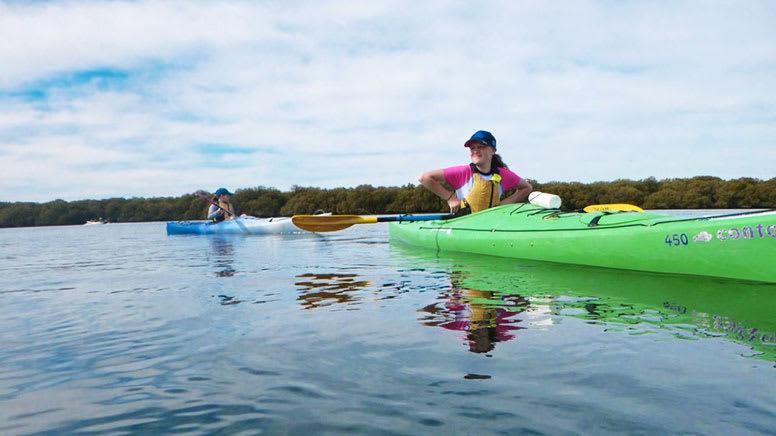 Kayak Tour, 3 Hours – Adelaide Dolphin Sanctuary