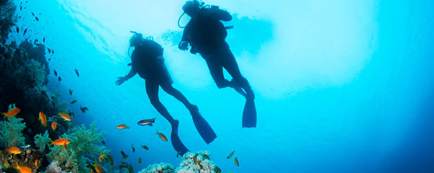 The best ways to see the Great Barrier Reef