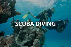cool scuba