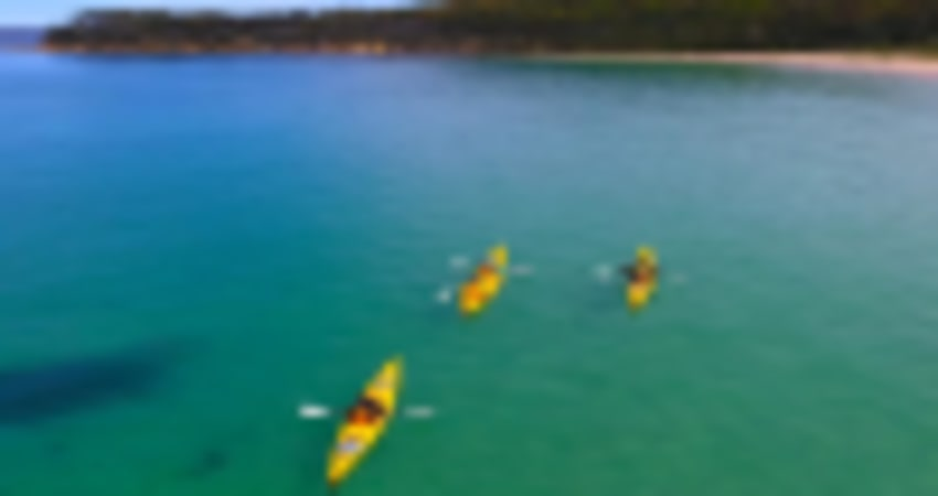 Batemans Bay Day Tour with Kayaking - Departs Canberra