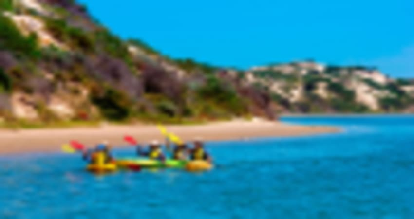 Full Day Guided Coorong Kayaking Tour - Goolwa, Adelaide