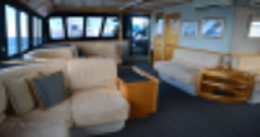 Whale Watching Cruise, 2.5 Hours - Augusta, WA