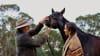Twilight Horse Ride, 90 Minutes - Margaret River