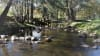 Camping Adventure, 2 Nights - Roma Orchard, Hunter Valley - For 2