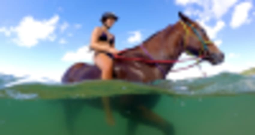 Bareback Ocean Horse Riding, Experience Needed - Rainbow Beach