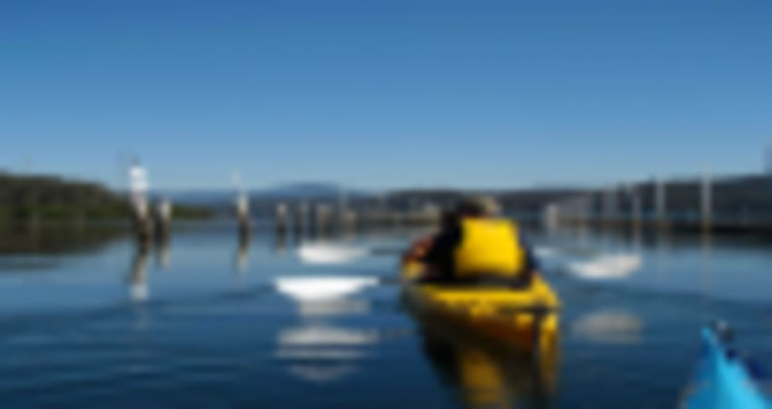 Batemans Harbour Guided Kayak Tour - Batemans Bay