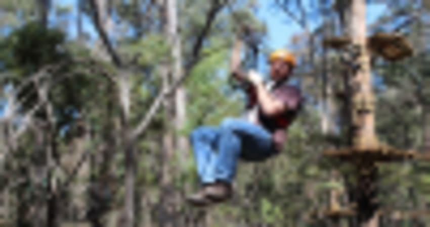 Treetop Ropes Course with Ziplining, Dwellingup WA