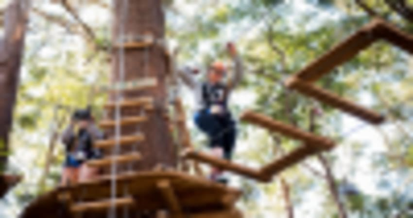 High Ropes Climbing Course with Flying Foxes - Coffs Harbour