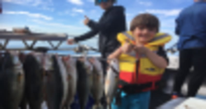 Half Day Fishing Charter with BBQ Lunch - Melbourne