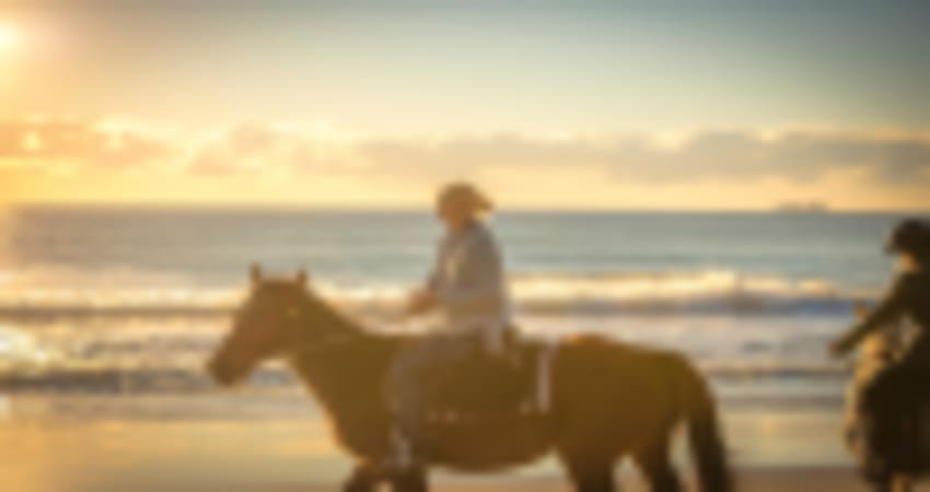 Horse Trail Ride, 90 Minute Byron Bay Sunrise or Sunset Horse Ride - Byron Bay
