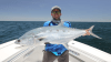 Port Douglas Inshore - Shared Charters Half Day