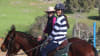 Adults Private Horse Riding Lesson, 1 Hour - Jarrahdale, Perth