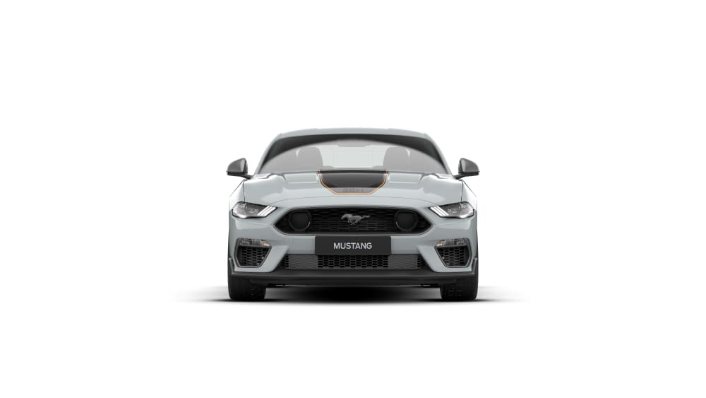 2020 Ford Mustang Mach E Pdf Brochure