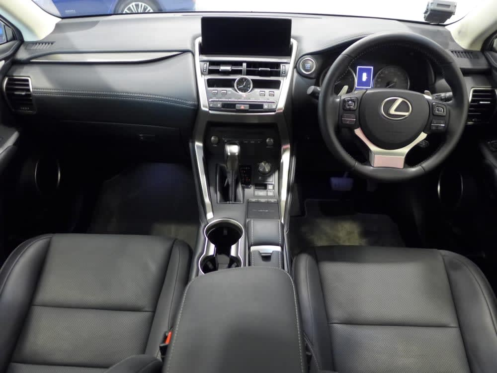 Toyota LEXUS NX300 LUXURY