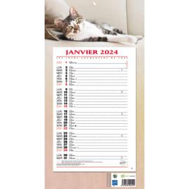 CBG Plaque éphéméride mensuel Animaux - format : 19 x 36 cm photo du produit