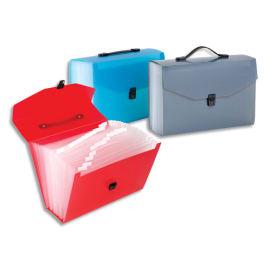 VIQUEL Trieur valise 24cmpts Propyglass PP 10/10 translucide. Coloris assortis Bleu, Rouge, Gris photo du produit
