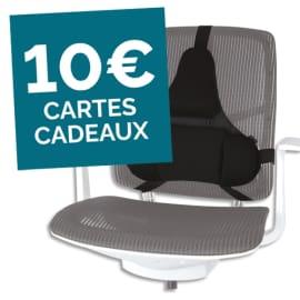 FELLOWES Support dorsal Premium Professional Series 8041801 photo du produit