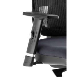 Paire d'accoudoirs réglables Noirs pour sièges Tertio photo du produit