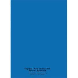 CONQUERANT C9 Cahier piqûre 24x32cm 96 pages 90g quadrillé 5x5. Couverture polypropylène Bleu photo du produit