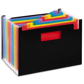 VIQUEL Trieur Seatcase RAINBOW 13 compartiments, en polypro 7/10e, 2 poignées, Noir intérieur multicolore photo du produit