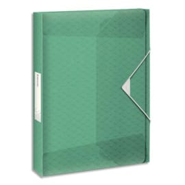 ESSELTE Boîte de classement Colour Ice dos de 4 cm, en polypropylène 7/10ème. Coloris Vert photo du produit