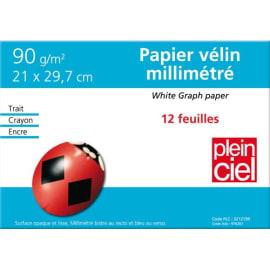 PLEIN CIEL Pochette de 12 feuilles papier millimétré 90g format 21x29,7cm photo du produit