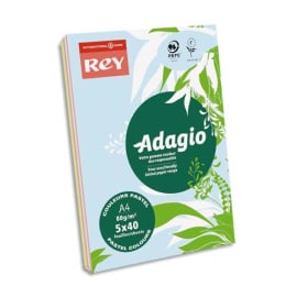 INAPA Ramette 40 feuilles x 5 teintes papier couleur pastel & vive ADAGIO assortis pastel&vifs A4 80g photo du produit