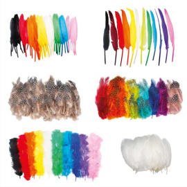 SODERTEX Pack éco Plumes 1000 pièces : faisan, dinde, indien, oies - Tailles et coloris assortis photo du produit