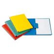 EXACOMPTA Chemise serre-feuilles, capacité 200 feuilles, en carte lustrée coloris assortis photo du produit