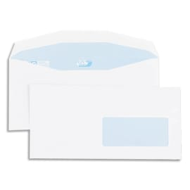 GPV Boîte de 1000 enveloppes 114x229mm Blanches fenêtre 45x100 80g photo du produit