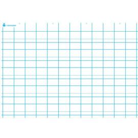 ART PLUS Carte première écriture, double ligne. En polypro 5/10è effaçable à sec format 70x100cm photo du produit