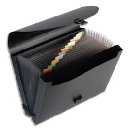 VIQUEL Trieur valise 12cmpts FanCase PP 8/10 opaque. Avec 2 compartiments. Coloris Noir photo du produit