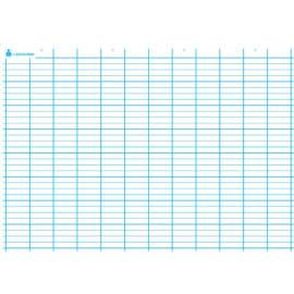 ART PLUS Carte Seyès simple. En polypro 5/10è effaçable à sec format 70x100cm photo du produit
