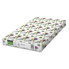 INAPA Ramette 125 feuilles papier extra Blanc satiné PRO DESIGN A3 250G CIE 168 photo du produit
