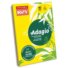 INAPA Ramette 50 feuilles x 5 teintes papier couleur intense ADAGIO assortis intenses A3 80g photo du produit