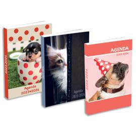Agenda septembre à septembre 1J/P, couverture cartonnée rasé vif - Format : 12 x 17 cm. 3 visuels animaux photo du produit