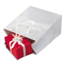 Paquet de 25 sacs pelliculés Blanc avec poignées cordelières assorties 19 x 27 x 10 cm photo du produit