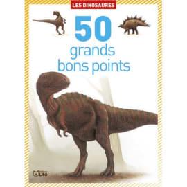 LITO DIFFUSION Boîte de 50 grands bons points dinosaures, format 9,8 x 13,5 cm photo du produit