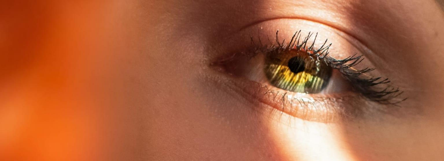 A model's eye