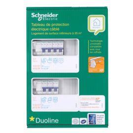 Tableau Pré-équipé 2 rangées 2ID 40A + 8 disjoncteurs - SCHNEIDER - SHN037100067 pas cher