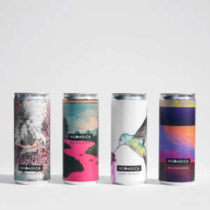 Premium Canned Wine Sampler Pack —4 Different Wines