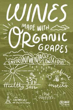Organic Wine Sampler
