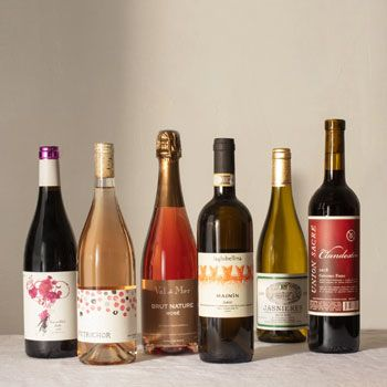 Plonk Wine Club for Enthusiasts