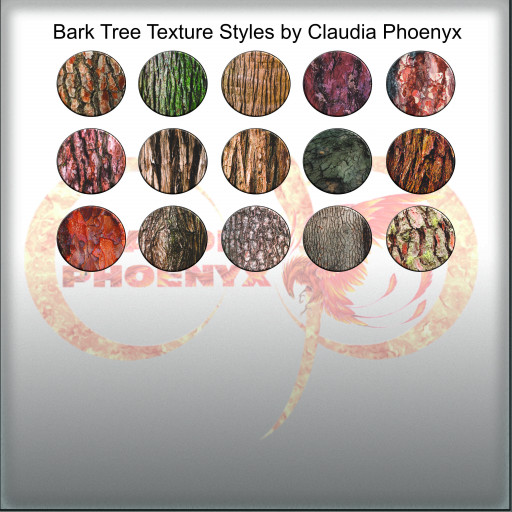 Bark Tree Texture Styles by Claudia Phoenyx