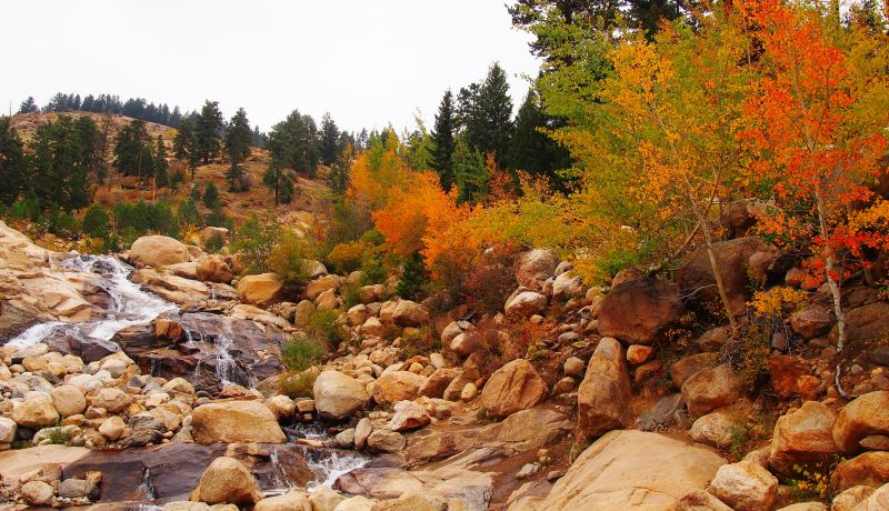 The alluvial fan in Rocky Mountain National Park has a great variety of color this fall.
