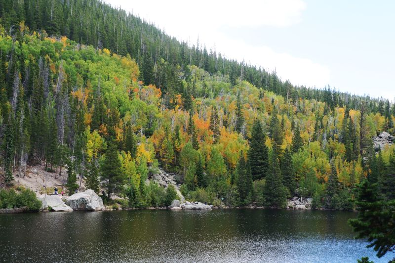 Aspens on the north side of Bear Lake beginning to change.