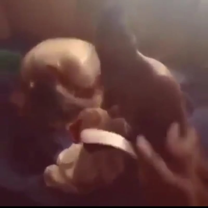 Man Catches Prophet Sleeping With His Wife (Video)