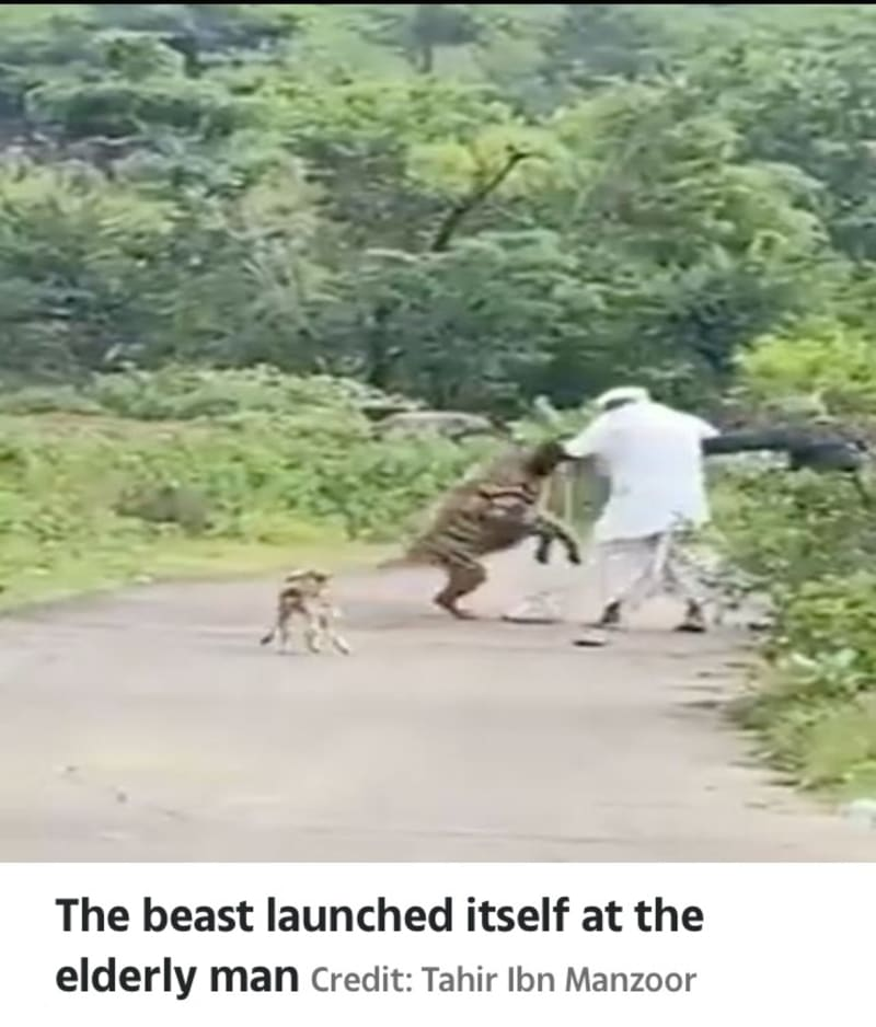 The Moment 200lb Hyena Pounced On An Elderly Man In India (Video)