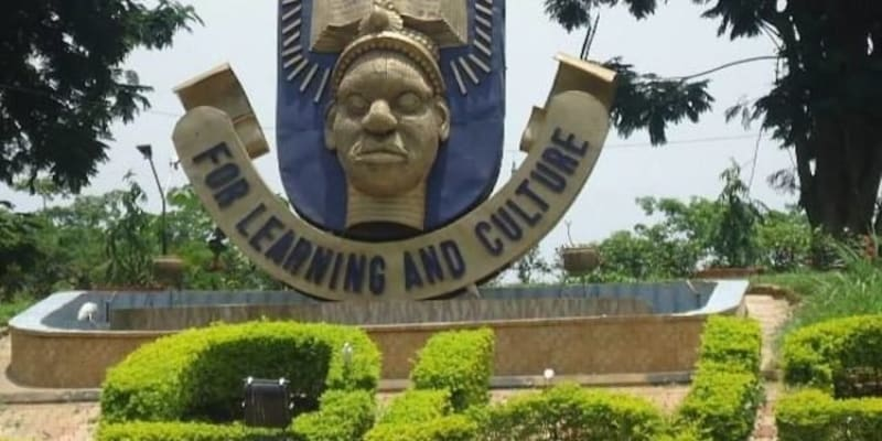 OAU Lecturer Slumps & Dies 24 Hours After She Directed Convocation Play