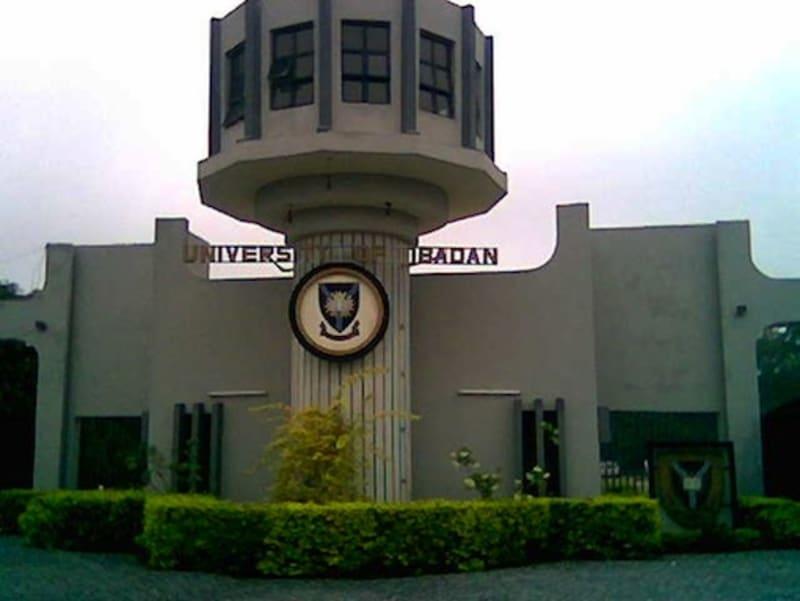 Amotekun Killed University Of Ibadan Student, Attacked Union Leaders - NANS
